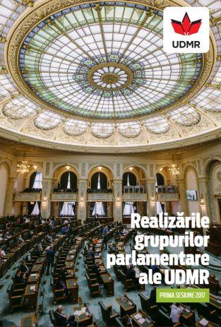 Realizările grupurilor parlamentare ale UDMR