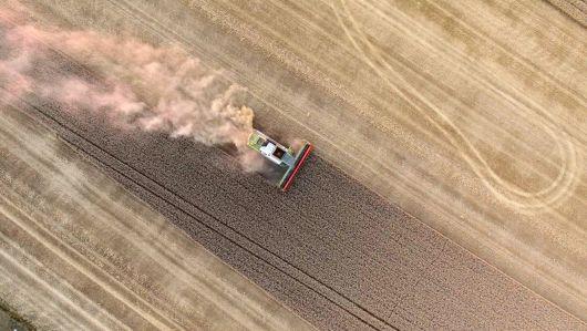 UDMR: reducem procedurile birocratice în cazul investițiilor agricole